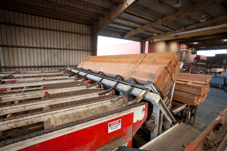 State of the art lumber mill